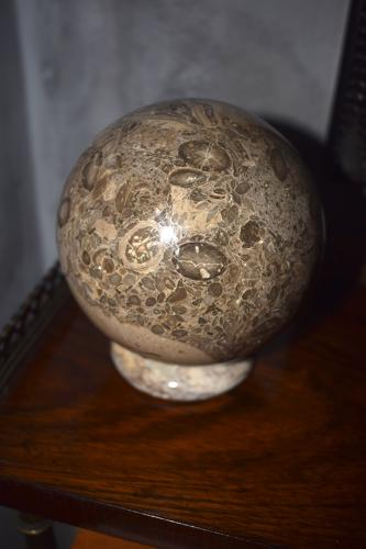 A limestone ball and stand with fossils