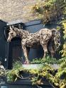 James Doran-Webb Horse Malawi Wood Sculpture - picture 1