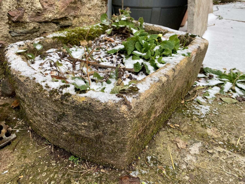 A ham stone trough