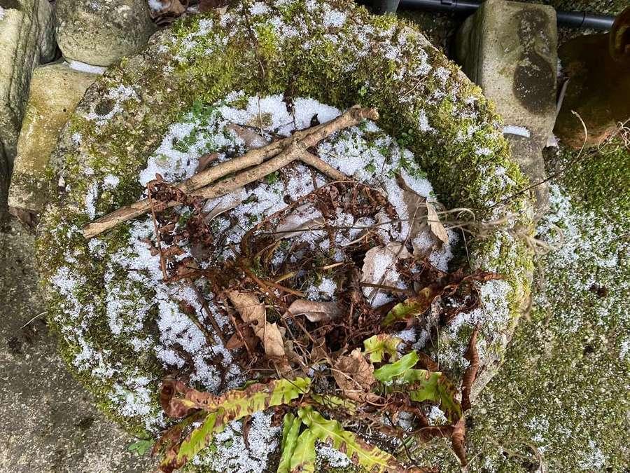 A circular trough